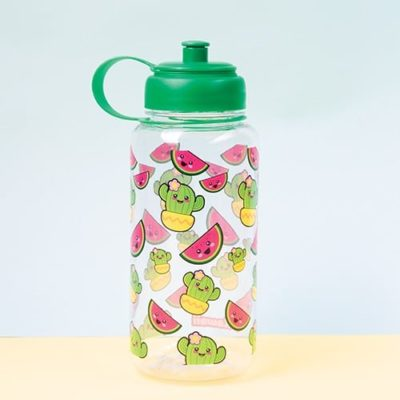 Fizz Creations Cactus and Watermelon large water bottle