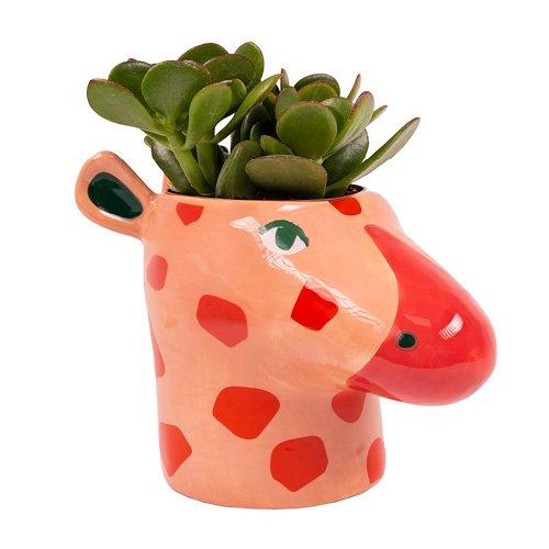 Hyper Jungle Giraffe Plant Pot