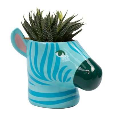 Hyper Jungle Blue Zebra Plant Pot