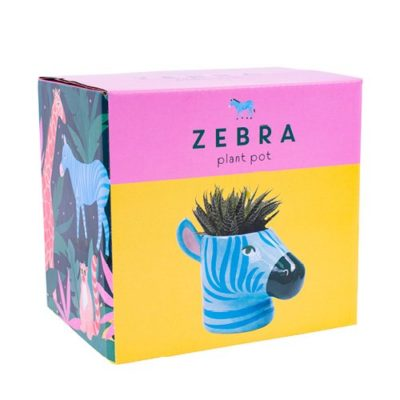 Blue Zebra Plant Pot Box