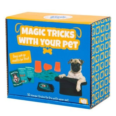 Fizz Creations Pet Pal Magic Tricks with Pets packaging